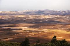 Morocco landscape (JLM62380) Tags: morocco landscape maroc paysage champs fields atlas montagne