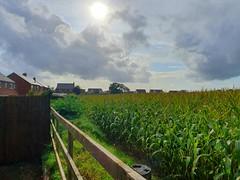 Gnosall skyline (Ugborough Exile) Tags: gnosall stafford staffordshire england midlands uk s10 2019