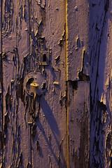 détail de porte 18 (Rudy Pilarski) Tags: minimalisme minimal minimalist minimalism abstract abstrait architecture architectura architectural old color city couleur ciudad colour vieux abandonné decay ombre shadows texture textura structural structure structura light lumière nikon d750 voyage travel