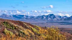 Fall Colors - Denali National Park & Preserve (in explore) (Lee J2) Tags: denalinationalpark alaska landscape fallcolors mountains alaskarange sky clouds