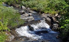The little stream (DameBoudicca) Tags: norway norge noreg norwegen noruega norvège norvegia ノルウェー skei skeikampen stream ström bäck bach ruisseau corriente flujo arroyo corrente 小川 流れ mountainstream wildbach peergyntvegen peergyntveien gausdal oppland flowingwater