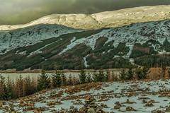 "Snow on the hills of Bunloinn Forest above Loch Loyne. (Scotland by NJC.) Tags: snow blizzard snowstorm sleet snowdrift snowflake flurry ثَلْج neve 雪 snijeg sníh sne sneeuw nieve lumi neige schnee χιόνι 눈 snø forest woodland plantation trees grove ""temperate rainforest"" غَابَة floresta 森林 šuma les skov bos ""bosque grande"" metsä forêt wald skog las pădure lakes lochs reservoirs waters meres tarns ponds pool lagoon lago 湖 jezero sø see λίμνη 호수 innsjø jezioro lac озеро lochloyne invergarry bunloinnforest scotland"