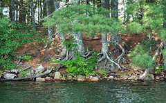 It will be how it always was (Wicked Dark Photography) Tags: landscape wisconsin kayaking lake nature paddling shore shoreline summer water