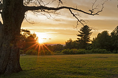 Blue Ridge Sunset (Laymons Pics) Tags: virginia sunsets skylinedrive shenandoahnationalpark trees sonya7iii sonyfe2470za