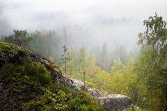 Autumn Fog (laurilehtophotography) Tags: suomi finland laukaa hyyppää hyyppäänvuori mountain fog mist autumn fall syksy evening colors forest nature landscape cliff clouds nikon d3100 nikkor 1755mm view