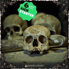 """""""Deep into that darkness peering, long I stood there wondering, fearing, Doubting, dreaming dreams no mortal ever dared to dream before;"""" -Edgar Allen Poe . . Interested in learning more, or being an ambassador for our book project? 💀 Sign up on our (Sedlec Ossuary Project) Tags: sedlecossuaryproject sedlec ossuary project sedlecossuary kostnice kutnahora kutna hora prague czechrepublic czech republic czechia churchofbones church bones skeleton skulls humanbones human mementomori memento mori creepy travel macabre death dark historical architecture historicpreservation historic preservation landmark explore unusual mechanicalwhispers mechanical whispers instagram ifttt"""