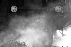 Eisenbahnfest XIII (Michael@H) Tags: berlin eisenbahnfest 2019 steam dampf mist nebel class03 baureihe03 462 2c1 032155 borsigberlin lokomotivfabrikborsigberlin deutschereichsbahn drb