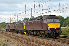 47746 33207 47826 37706 0M43 EuxtonC_7783 - Copy (British Rail 1980s and 1990s) Tags: train railway rail railroad loco locomotive lmr londonmidlandregion mainline wcml westcoastmainline livery liveried traction wcrc westcoastrailwaysco br britishrail ee englishelectric preston lancs lancashire diesel growler tractor brush sulzer type3 type4 brcw 33 37 47 class33 class37 class47 0m43 convoy jimmartin chrisfudge 33207 37706 47746 47826
