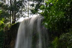 Giba Gorge (Esther Blaauwwiekel) Tags: 2019 durban fall insideafrica kwazulunatal march southafrica waterfall