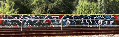 Graffiti along the railway (wojofoto) Tags: trackside spoor spoorweg railway amsterdam gear benoi benoit graffiti streetart wojofoto wolfgangjosten nederland netherland holland