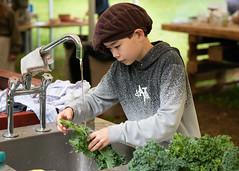 The Kings Feast (6): Preparation of kale (bohelsted) Tags: grantoftegaard grantoftegård ballerup country farm food leicadg nocticron gm5 kale school 425mm