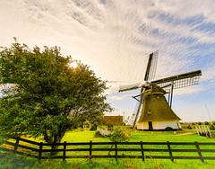 Rijswijk windmill's (kaveh zabihi) Tags: rijswijk netherlands windmill nuture