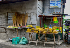 Banana Tables (risingthermals) Tags: philippines pilipinas southeast asia market home house building walis tingting plastic bags tricycle table fresh produce fruits saging bananas yellow banana heart weight scale puso ng upo sack crate selling corn mais brooms sign