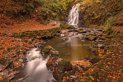 Dreams Of Autumn   Came across this shot today after looking through my archive after having to spend time at home after falling down my stairs.  #northernireland #canon #ireland #longexposure #leefilters #longexpo #Autumn #waterfall #landscapelovers #gle (Amanda Wade Photography) Tags: glenoe autumnal greatoutdoors autumn longexposure nature naturephotography tree coantrim longexpo leefilters discoverni canon northernireland visitni outdoors stream waterfall memories landscapelovers river ireland
