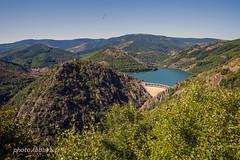 Lac de Villefort (louis.labbez) Tags: lac barrage eau water france cévennes lozère lake labbez montagne mountain paysage countryside