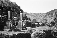 Kochiumi, Miyazaki (homesickATLien) Tags: 35mm art film kodak expired analog japan travel backpacker kochiumi miyazaki graveyard spirit shintuism cemetery japanese nature kami