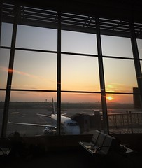 Sunset boarding in Warsaw (roomman) Tags: 2019 poland sun sunset travel evening night waw fra lufthansa plane transport transportation airport air airfield aviation lh dlh eddf chopin lotnisko airline airlines epwa sky terminal lot embraer polish gate boarding apron daium aium airbus a320 320