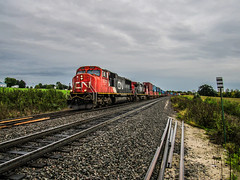 Heading on Down (Elijah J. Jackson (EJ)) Tags: cn canadiannational country railroad railroadphotography railroadtracks rails photography photo perspective freighttrain sd75i intermodal wisconsin widecab emd diesel diesellocomotives trees farm