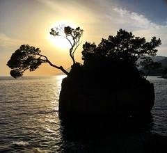 The Brela Stone, most famous stone in Croatia (Tommysfotografie) Tags: landscapephotography landscapephoto landscapeperfection landscapeview landscape sommer summer summervibes strand praia playa beach seacoast seaview sea adriatico adriaticcoast adriaticsea adria zonsondergang sonnenuntergang solnedgang solnedgång coucherdesoleil puestadesol pordosol tramonto tramonti sunsetlandscape sunsetphoto sunsetmood sunsetperfection sunsetphotography sunsets sunsetview sunsetvibes sunset treevibes treemagic tree insel island rock stone puntsrata brelastone dalmatien dalmatia hrvatska kroatien croazia croatia