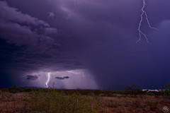 Back to Top (Steven Maguire Photography) Tags: arizona thunderstorm cochisecounty southwest skyscape sierravista lightning landscape monsoon clouds