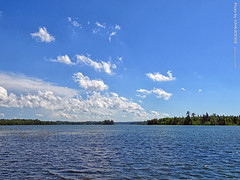 Lake Itasca in the Afternoon, 15 July 2019 (photography.by.ROEVER) Tags: minnesota 2019 july july2019 vacation roadtrip 2019vacation 2019roadtrip minnesota2019roadtrip minnesota2019vacation clearwatercounty itasca lakeitasca itascastatepark park statepark lake lakes lakeshore shore trees tree forest forests woods afternoon usa