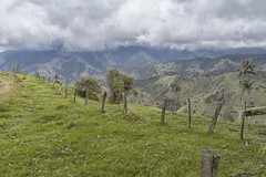 La Cabonera (magnetic_red) Tags: fence pasture ruralscene colombia green lacabonera clouds mountains waxpalms travel scenic
