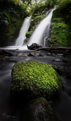 Twin Falls. (davothedon) Tags: focusstacked green waterfall landscape fujifilm fuji river stream rocks rock devon dartmoor uk nationalpark nature trees moss