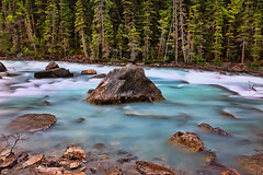 Yoho River (ashockenberry) Tags: wilderness wild west white water ecosystem reserve river tourism travel habitat beautiful beauty nature naturephotography natural native majestic mountains landscape park rapids whitewater ashleyhockenberryphotography