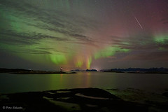 Northern lights and shooting star (Petra Schneider photography) Tags: buvåg norge norway nordnorwegen northernnorway nordlys nordland northernlights nordlicht norwegen nordlichter nordurljos hamarøy polarlicht polarlichter shootingstar étoilefilante sternschnuppe