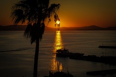 Just Another Tequila Sunset (ScopPics) Tags: naxos greece sunset palm tree sea griechenland