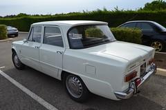 ALFA ROMEO Giulia 1300 TI - 1966 (SASSAchris) Tags: alfa romeo alfaromeo voiture italienne giulia ti tours trèfle 10000 10000toursducastellet castellet circuit ricard httt htttcircuitpaulricard htttcircuitducastellet paulricard giuliati 1300