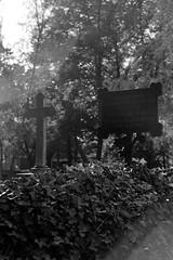 Village Churchyard (ucn) Tags: lensflare tessar135cmf45 rollexpatent6x9cm zeissikondonata2277u ilfordhp5 agfarodinal berlin wittenau dorfkirche friedhof grab grave churchyard