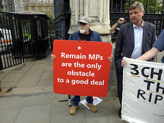 Brexit_Westminster (ChiralJon) Tags: brexit demonstrator banner protester protestor house commons houses parliament london westminster londres londyn londra journalism news