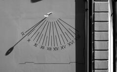 09:25 (Alfredo Liverani) Tags: thursdaymonochrome thursday monochrome tm 7dwftm canong5x canon g5x pointandshoot point shoot ps flickrdigital flickr digital camera cameras 2692019 project365269 project365092619 project36526sep19 oneaday photoaday pictureaday project365 project project2019 2019pad