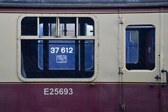 """Let's Look Through the Carriage Window (37190 """"Dalzell"""") Tags: tractor ee growler type3 drs englishelectric hnrc directrailservices bloodcustard carminecream harryneedlerailroadcompany unbrandedblue composite coach compo ruddington mk1 class37 25693 class376 37691 37612 dieselgala gcrn 37179 greatcentralrailwaynorth d6879 eps europeanpassengerservices"""