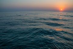 Durban (Esther Blaauwwiekel) Tags: durban southafrica zuidafrika durbanbeach surfers sunrise