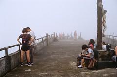Misty. (蒼白的路易斯) Tags: 聖母山莊 kodakcolorplus200 yashicaelectro35gsn 底片攝影 底片