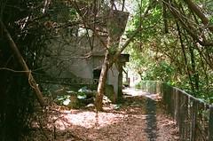 The path. (蒼白的路易斯) Tags: fujifilmxtra400 yashicaelectro35gsn 底片 底片攝影