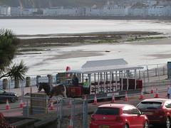 Douglas Horsedrawn Tram (deltrems) Tags: douglas horsedrawn tram public transport horse isleofman mann promenade seafront