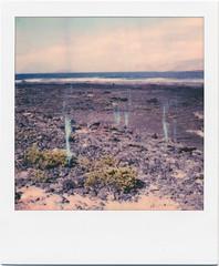 Lanzarote X (Ulla M.) Tags: polaroid polaroidoriginals pola lanzarote atlantik welle wave strand beach analog analogue analogphotography instantfilm instant sofortbild umphotoart coast küste felsen