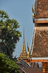 Luang Prabang – Royal Palace (Thomas Mulchi) Tags: luangprabang laos 2019 tree trees palmtree roof roofs temple buddhisttemple palace happyplanet asiafavorites