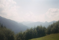 (Moesko Photography) Tags: analogue leidolf lordomat germany tegernsee nature outdoor mountain summer trees forest field landscape alps clouds sky
