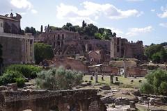 Forum, Rom (AWe63) Tags: forum rom roman römer römischeruinen italien antik pentax pentaxk1mkii andreasweyermann cawe63