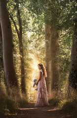 In the Woods ({jessica drossin}) Tags: jessicadrossin autumn tones actions overlays face girl portrait pretty dress bear animal stuffed trees forest path light leaves alone wwwjessicadrossincom