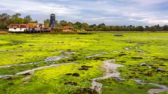 Havant Seaweed (Aron Radford Photography) Tags: havant hampshire portsmouth mill watermill sea seaweed low tide river lake quay quayside landscape seascape coast coastal uk