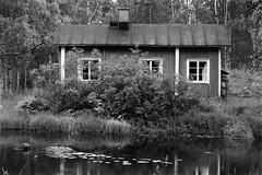 Cottage by the Stream (Petri Karvonen) Tags: cottage cabin water stream river savikoski karttula architecture building house wooden analog film blackwhite bw blackandwhite monochrome kodak trix 400tx minolta x700 md 85mm 852 finland sunny summer reflections