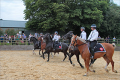 Advance (meniscuslens) Tags: police horses horse display arena charity rider hounds heroes trust buckinghamshire aylesbury high wycombe princes risborough