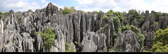 Panoramic view of Shilin Stone Forest, Shilin, Yunnan, China (JH_1982) Tags: shilin stone forest 石林 naigu 乃古石林 karst mountains unesco world heritage site national scenic area 昆明市石林风景区 大小石林 李子菁石林 limestone steinwald panorama panoramic view pillar rock fels nature natur landscape scenery kalkstein caliza calcaire 윈난스린 石林彝族自治县 yunnan 云南 雲南省 윈난성 юньнань peoples republic china prc chine cina 中国 中國 中华人民共和国 중화인민공화국 китайская народная республика