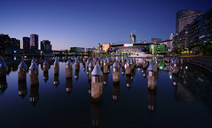 Melbourne... (lightoflanzarote) Tags: melbournedocklands melbourne australia victoria docklands laowa15mmf2 laowa venuslenslaowa wideangle water reflection cityscape citylights city sonya7rmarkii sonya7rii sonyalpha sonya7rmark2 twilight bluehour marvel