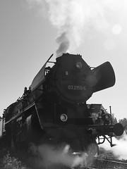 Eisenbahnfest XIV (Michael@H) Tags: berlin eisenbahnfest 2019 class03 baureihe03 462 2c1 032155 borsigberlin lokomotivfabrikborsigberlin deutschereichsbahn drb betriebsbahnhofschöneweide